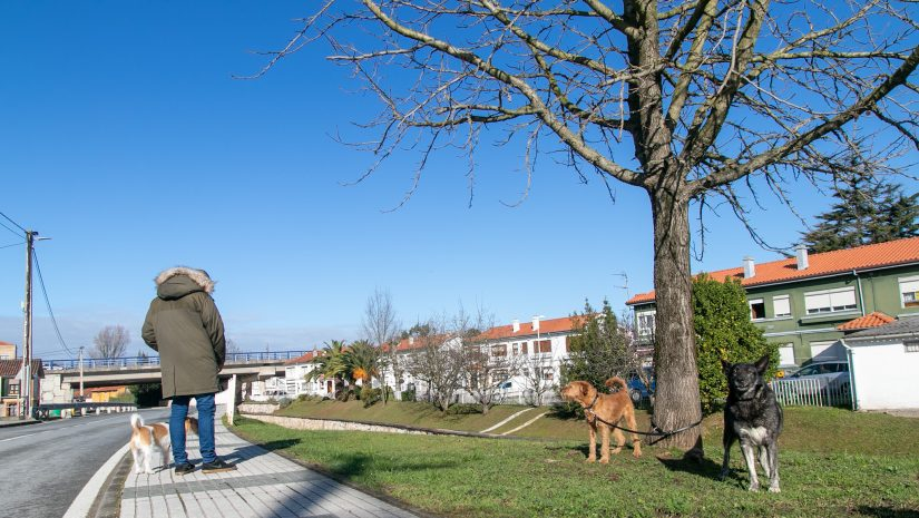 Un vecino paseando sus perros por una calle de Rinconeda