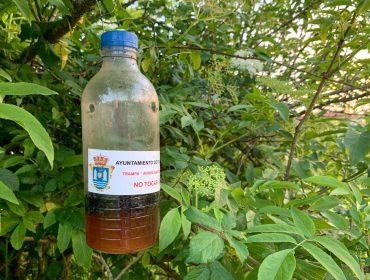 Una de las trampas para vespa velutina que se utiliza en el municipio de Polanco