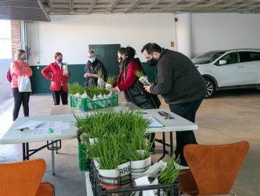 La alcaldesa de Polanco, Rosa Díaz Fernández, y los concejales Isabel Herrera Landeras y Cristian Olmo Salas durante el reparto de las plantas de cebolla