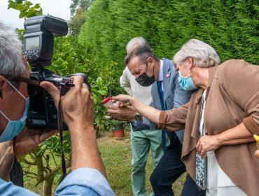 El consejero de Desarrollo Rural, Guillermo Blanco, y de la alcaldesa, Rosa Díaz, asisten a la suelta experimental del parasitoide Tamarixia dryi con el fin de frenar la expansión de la Psila Africana